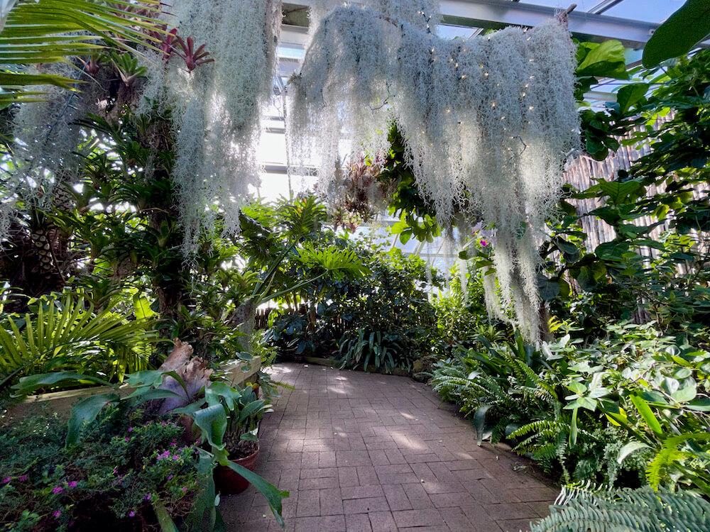 Walkway inside Lamberton Conservatory