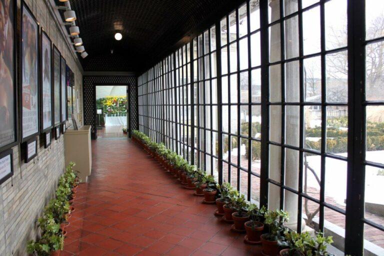 Flowers lining the corridor