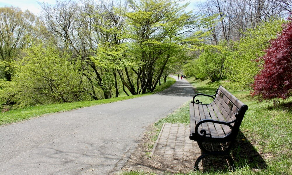 Park bench and path