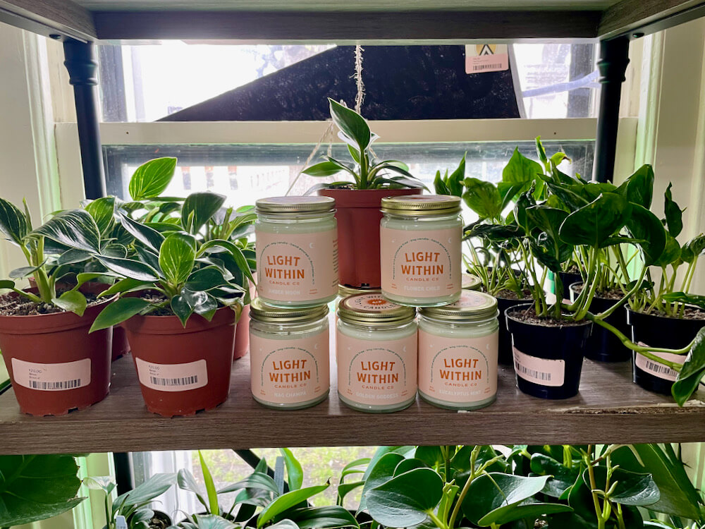 Green tropical plants next to candles from Light Within Candle Co.