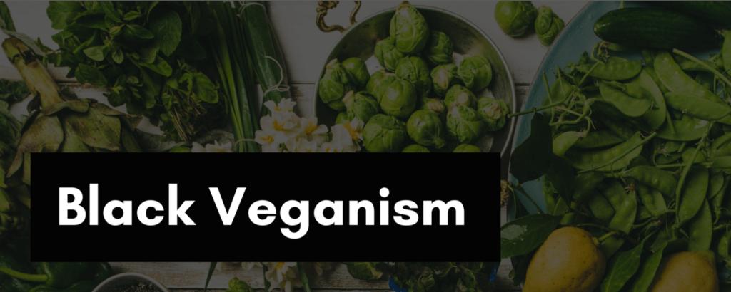 Black Veganism Class at 540WMain